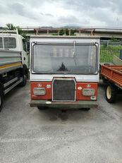 Transporter Alpinist con caricafieno e cassone flatbed truck